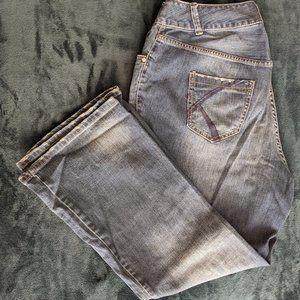 Lane Bryant Distressed Flare Jean - 16W Short